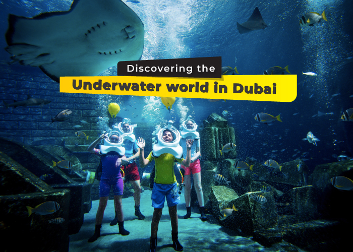 discovering-the-underwaters