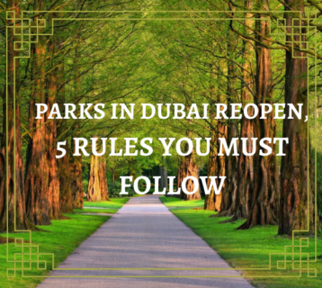 5 Rules You Must Follow